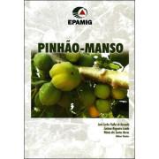 Pinhão - Manso
