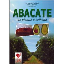 Abacate do Plantio à Colheita