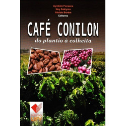 Café Conilon - do plantio à colheita