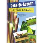 Cana-de-Açúcar do Plantio à Colheita