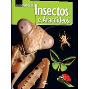 Insectos e Aracnídeos