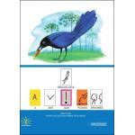 Gralha Azul: A Ave que Planta Árvores